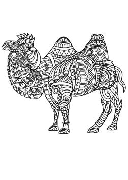 Adult Coloring Pages Animals Camel 1