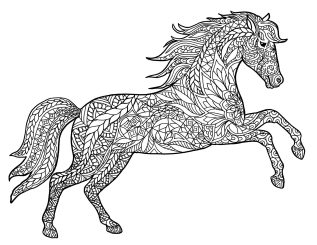 Adult Coloring Pages Animals Horse 1