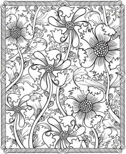 Adult Coloring Pages Patterns Free plk1