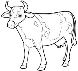 Cow Animal Coloring Pages Big Cow Printable for Young Kids