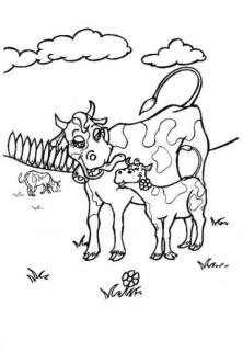 Cow Coloring Pages Free Printable Mother Cow Nurturing Her Calf