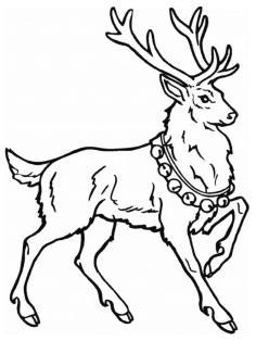 Deer Coloring Pages Free Printable Santas Deer Is Very Proud