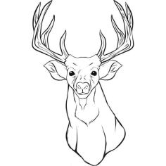 Deer Coloring Pages for Kids Deer Head