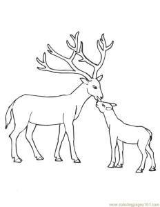 Deer Coloring Pages to Print Deer Mom and Her Baby
