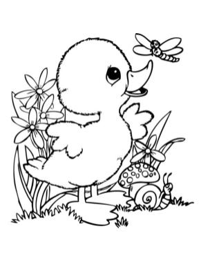 Duck Coloring Pages Baby Duck and Dragonfly