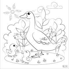Duck Coloring Pages Mother Duck and Her Chicks
