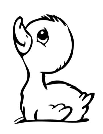 Duck Coloring Pages Simple Baby Duck Drawing