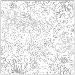 Spring Coloring Pages for Adults Hummingbird and Flowers