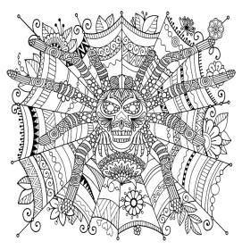 Spider Coloring Pages for Adults 26yq