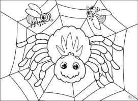 Spider Coloring Pages for Toddlers jk15