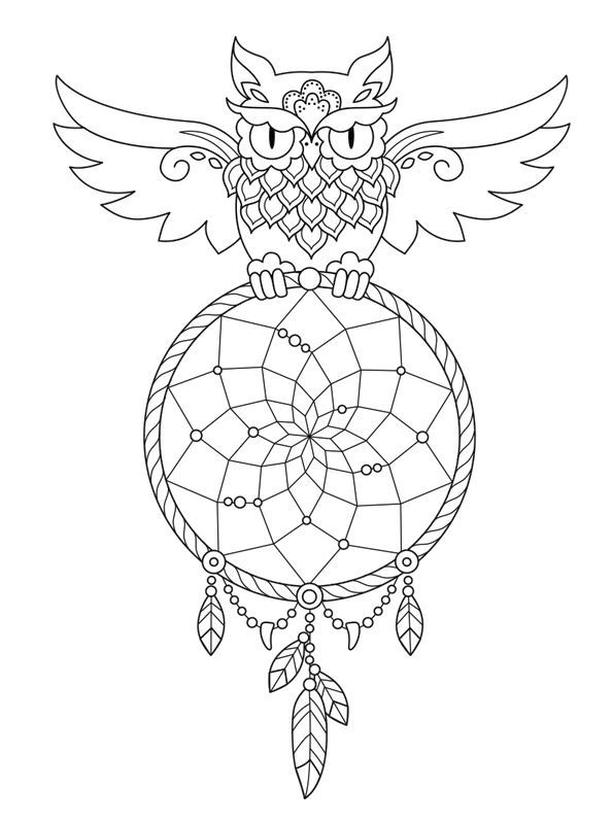 Coloring Pages for Teenage Girl to Print Owl and Dream Catcher