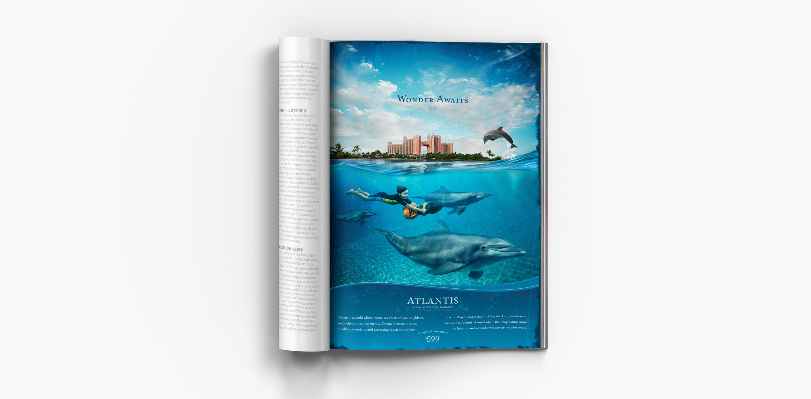 Dolphin ad in magazine