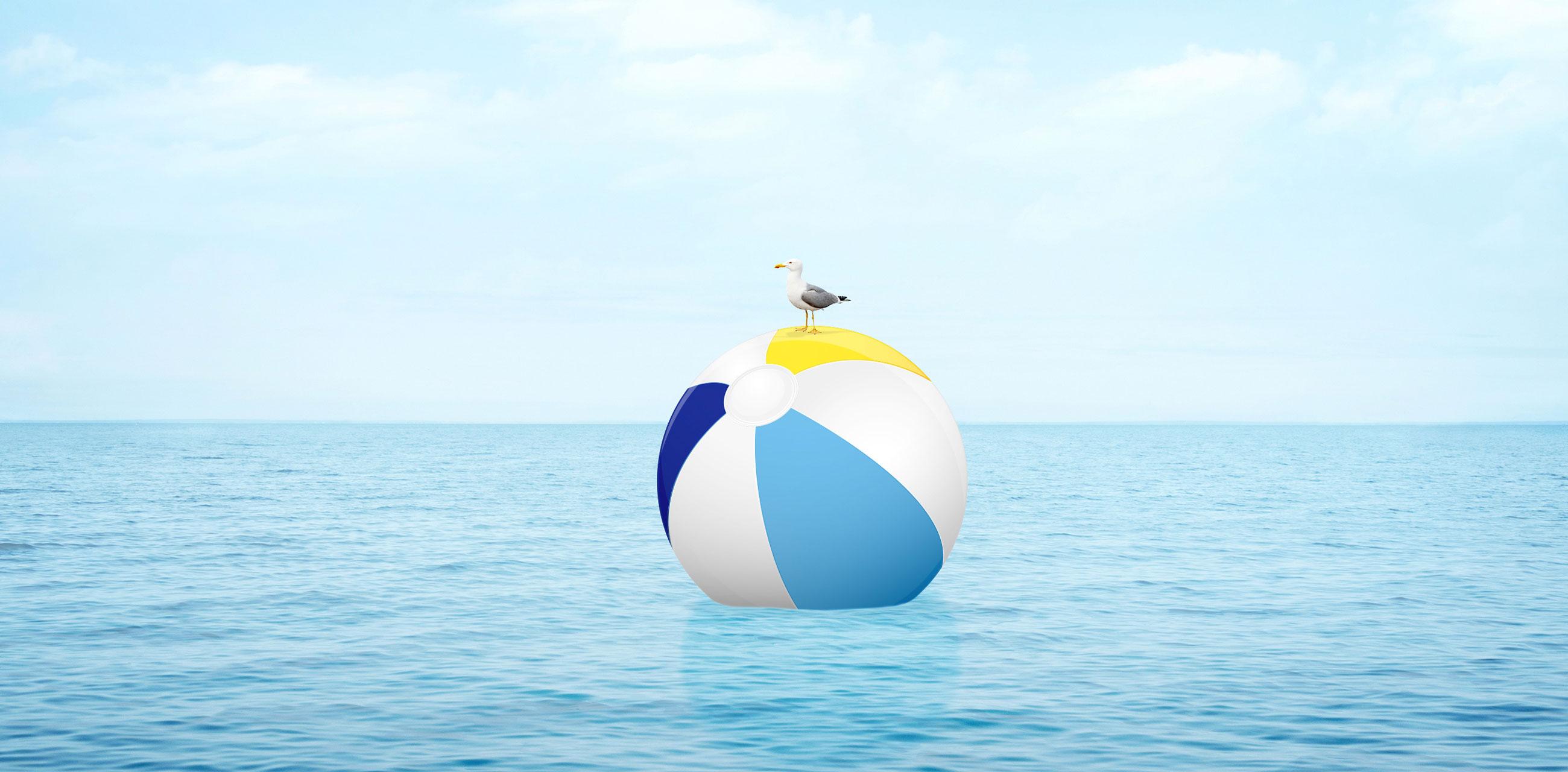 Seagull on beach ball