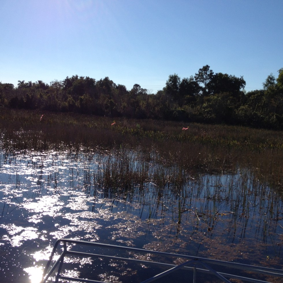 Florida Watershed Protection Act (§403.067, Fla. Stat.)