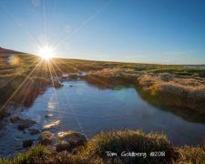 -Tom Goldberg - Evans Ice Pond