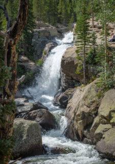 Owen-Newnan Spring-Runoff-at-Alberta-Falls