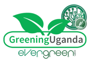 Greening Uganda with EverGreenCoin