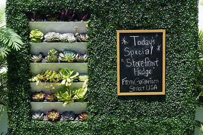 The Storefront Hedge