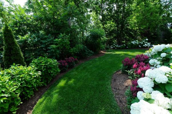 shaded backyard - home landscaping
