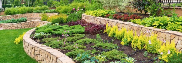 evergreen landscaping . - quality