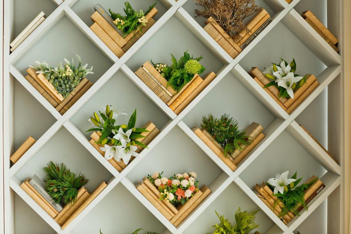 libreria piante