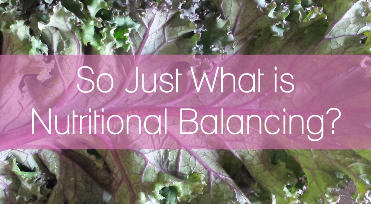 So Just What is Nutritional Balancing?
