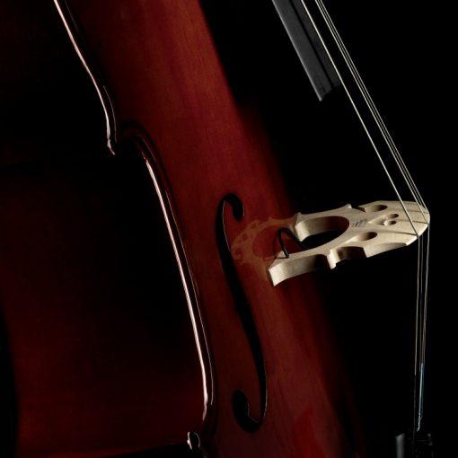 Fishman C-200 Concert Series Cello Pickup Installed