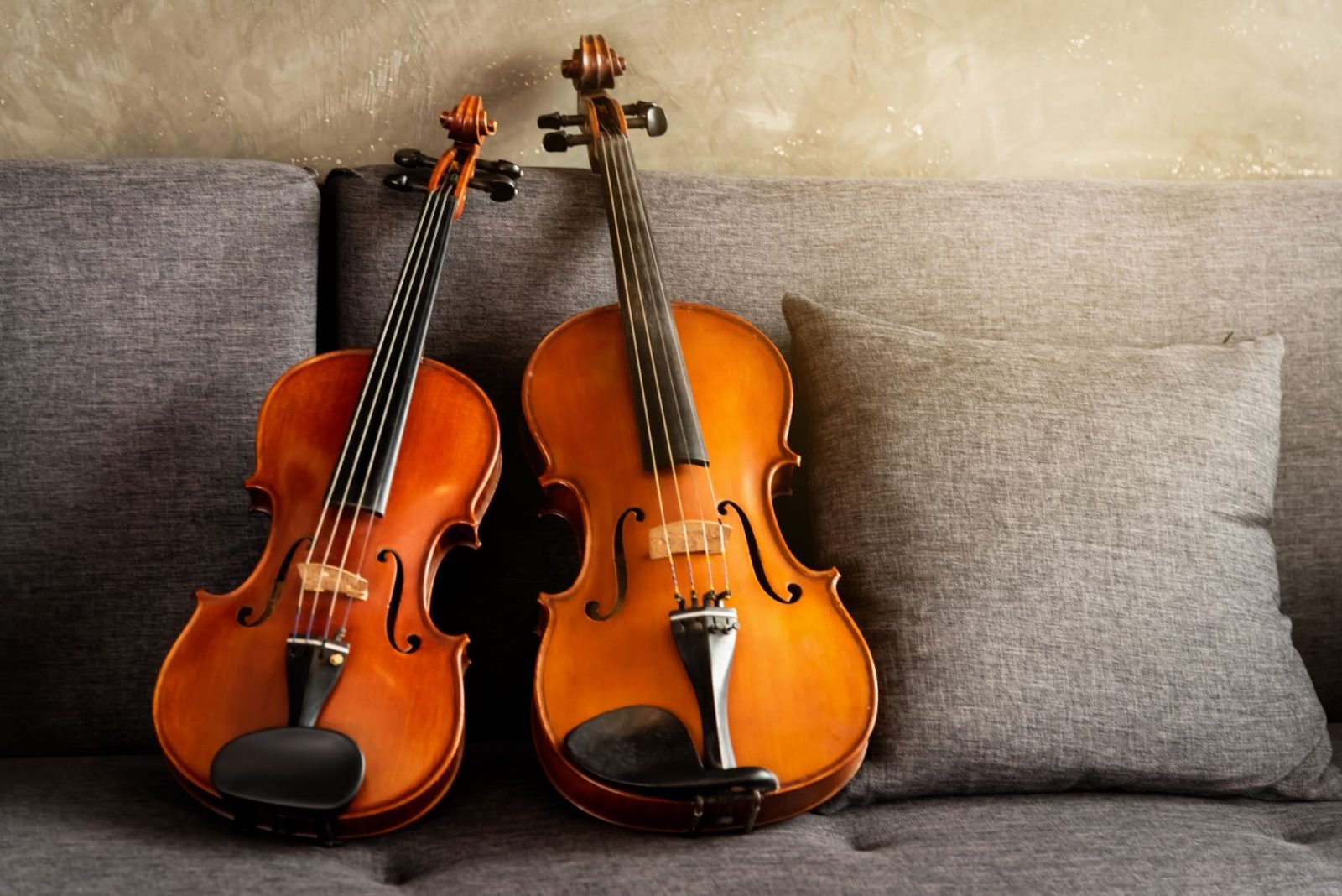 Difference Between Viola and Violin