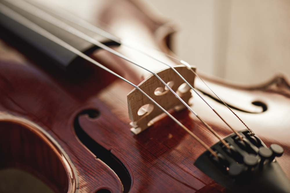 How many strings are on a violin