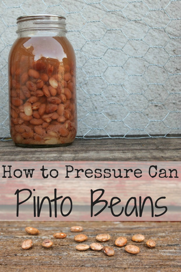 How to Pressure Can Pinto Beans