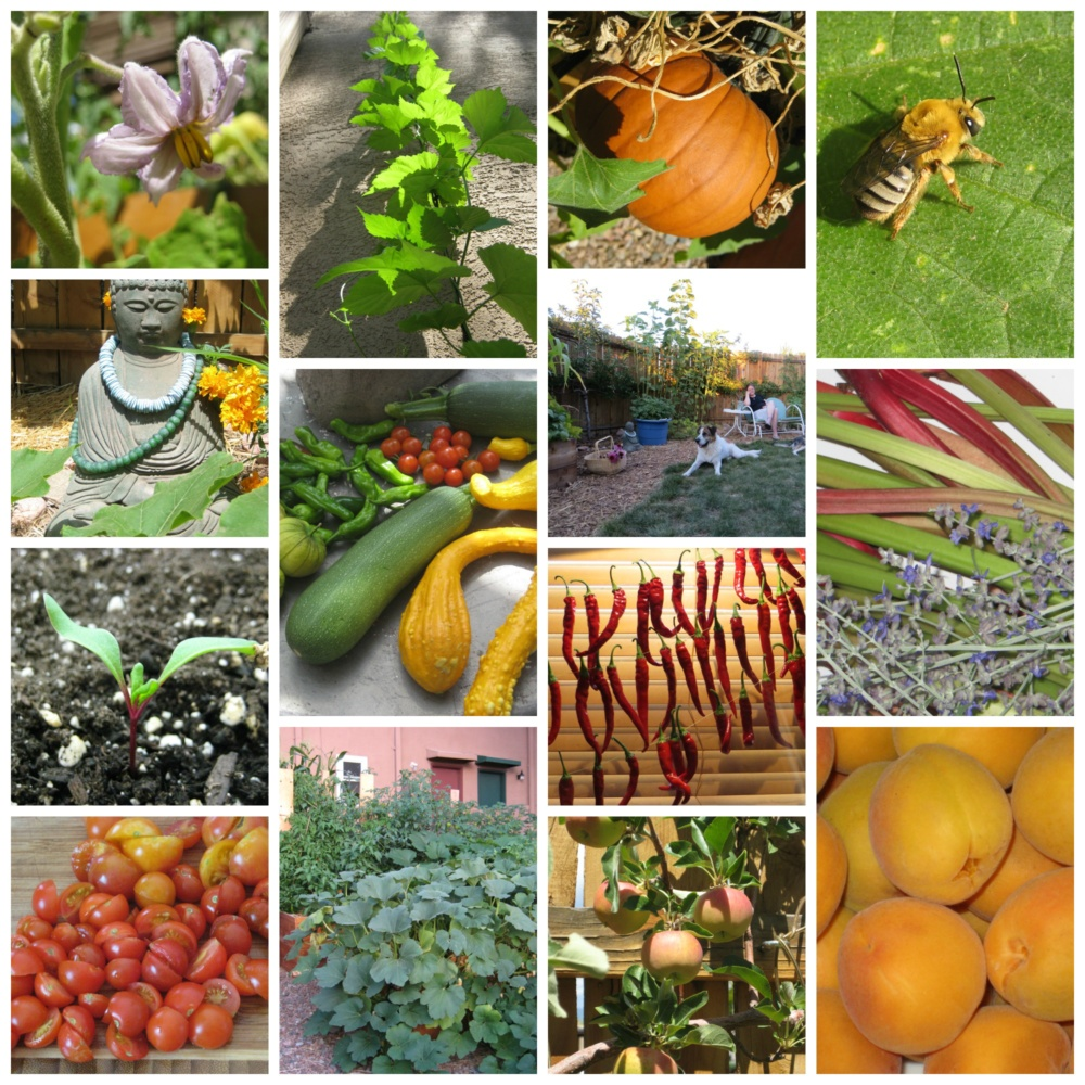 Perfect urban farm garden collage with industriel urban - Industriel urban farm cuisine los angeles ca ...