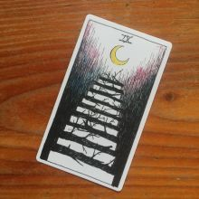 the-wild-unknown-tarot-nine-of-wands