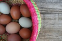 Eggs in colorful basket