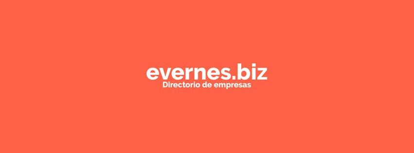 evernes-biz--web