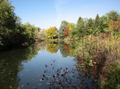 breathtaking-pond