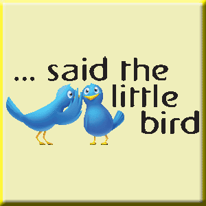 Said The Little Bird social news for weddings, obituaries and celebrity news.