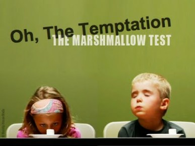 Building Modern Marshmallow Test New >> The Marshmallow Test Predicting Success Ewc
