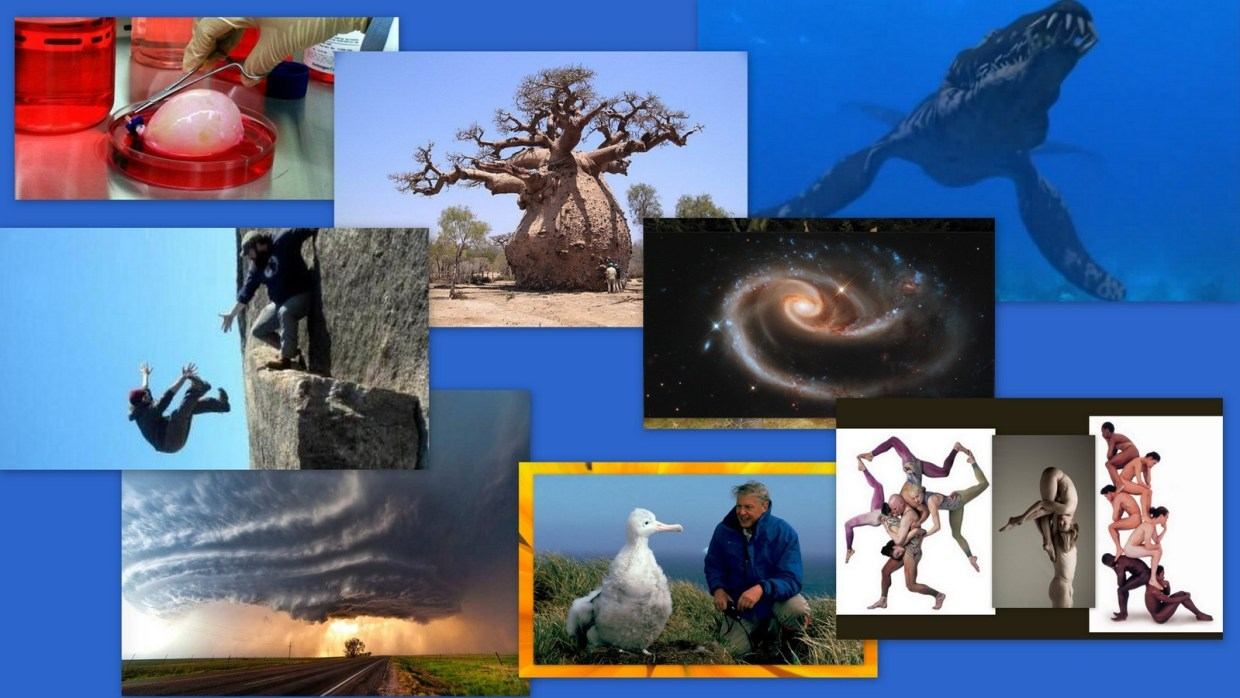 Image: Collage with Interesting photos