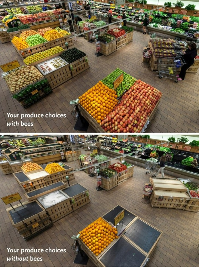 Image: Market with current bee population's output versus no bee population's output