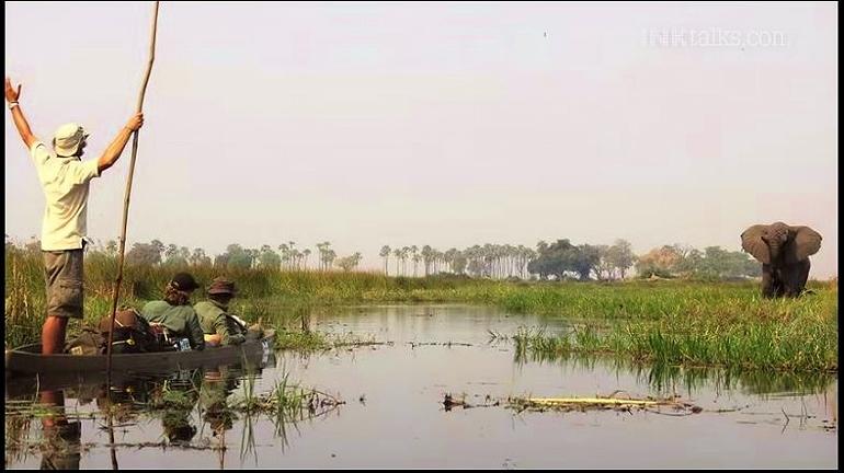 Image: Okavango Delta