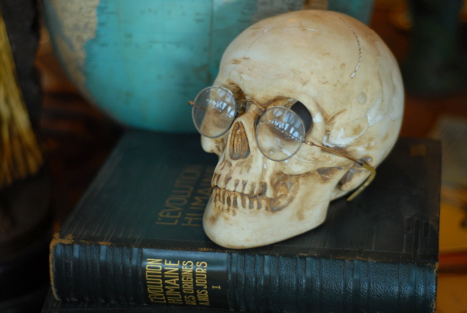 Image: A fake skull sitting on a human evolution book wearing glasses
