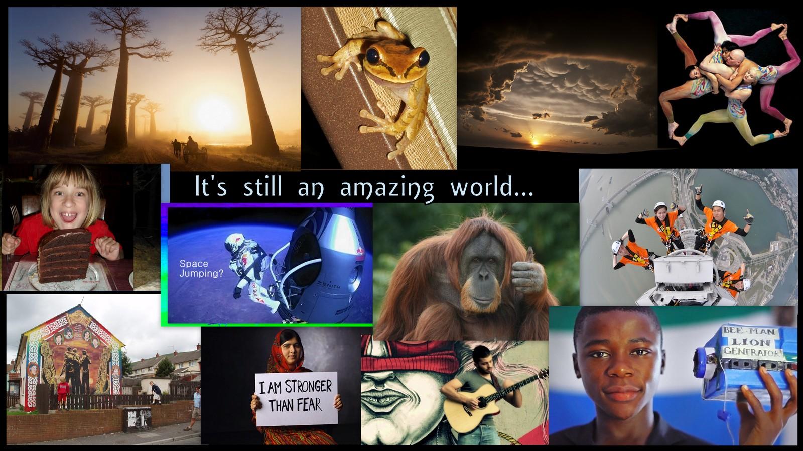 Image: EWC thumbnail collage