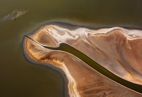 Image: a green and camel colored delta with tiny flamingos