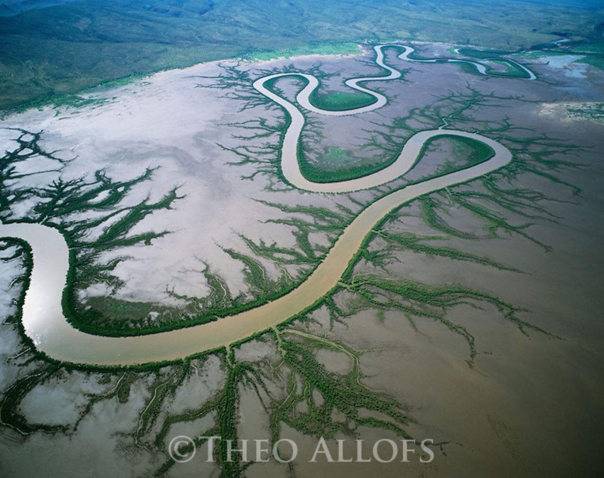 Image: Australia, Western Australia, Kimberley region, aerial of meandering river in mudflats in rainy season, mangrove trees lining shores of main river and tributarie