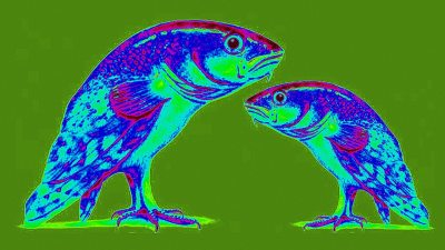 Image: Two fish with legs like birds