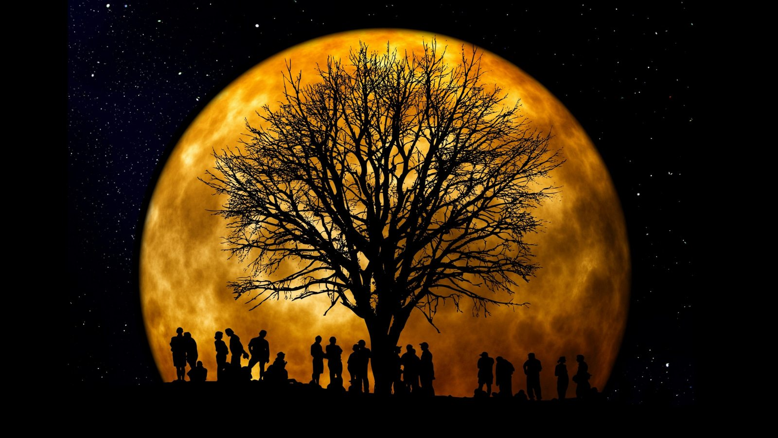Image: An enormous orange full moon rises behind the black silhouettes of a great tree and a group of people