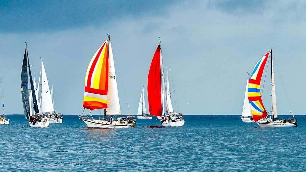 Image: Sailboats on the ocean