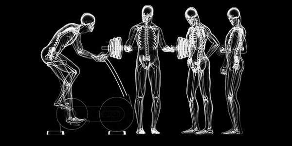 Medical Exercise Training Mesa Arizona