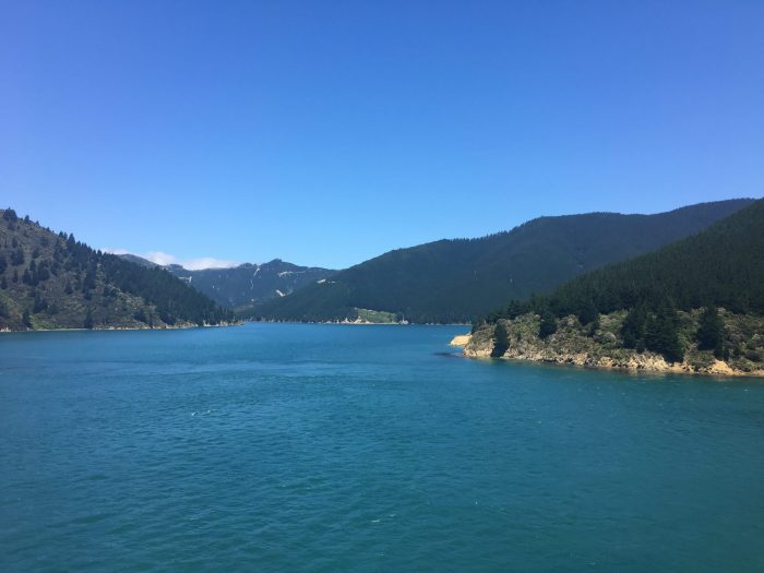 queen charlotte sound 700x525 - Nelson to Wellington, New Zealand by bus and ferry via Picton