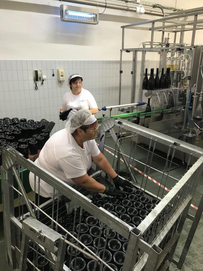 bohemia sekt winery bottling line 700x933 - A visit to the Bohemia Sekt winery in Pilsen, Czech Republic